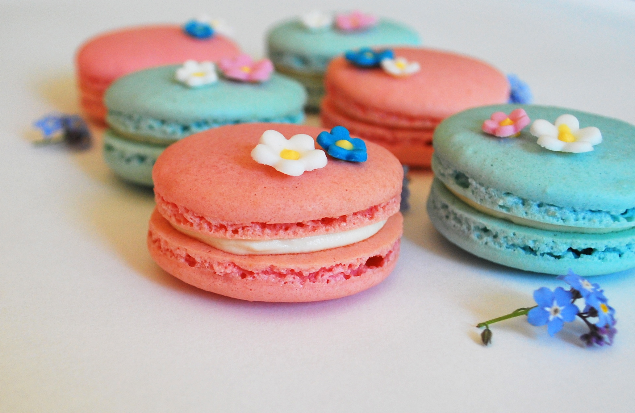 Baby Shower Macarons   ALMOST ALWAYS HUNGRY